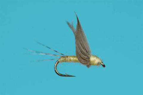 Pmd No-Hackle Dry Fly Trout Fishing