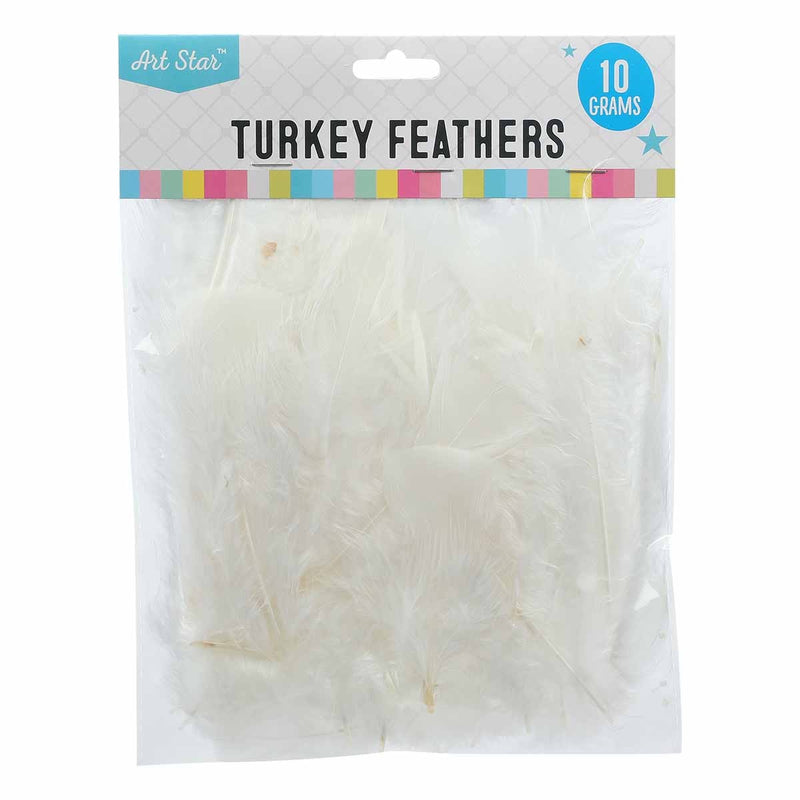 Gray Art Star Turkey Feathers White 10g Feathers