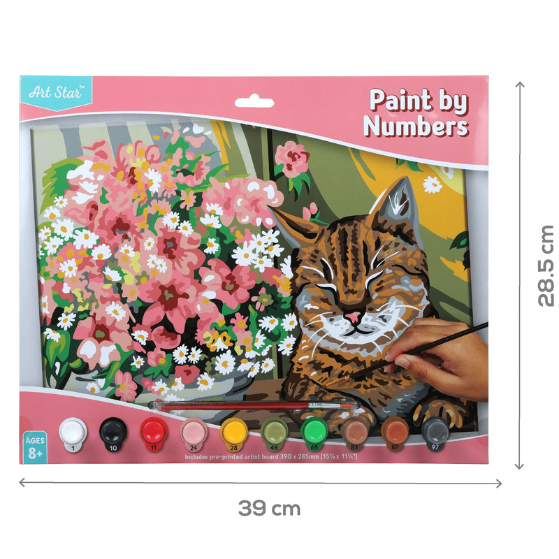 Sienna Art Star Paint By Numbers Cat Large Kids Kits