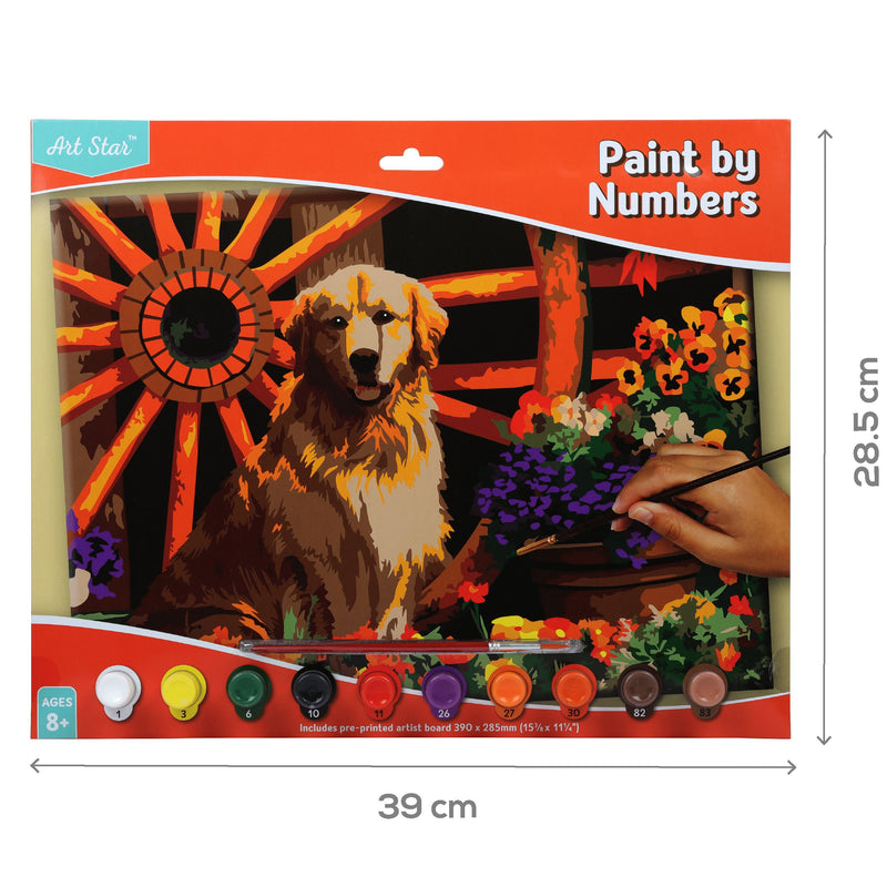 Chocolate Art Star Paint By Numbers Golden Retriever Large Kids Kits