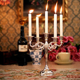 Chandeliers Candle Holders ¦Candles Chandelier  in every Style Gift -Wine Lovers