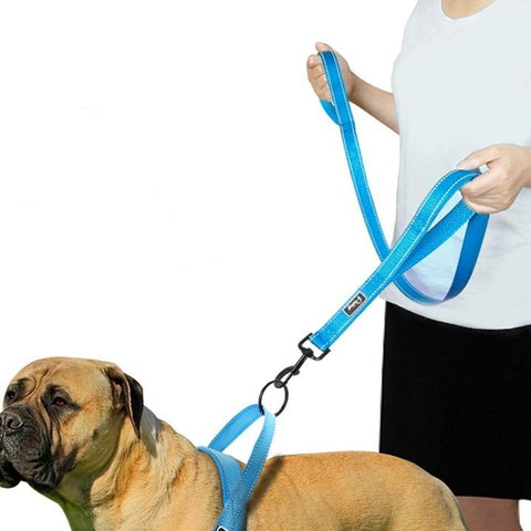 Premium Reflective Dog Leash