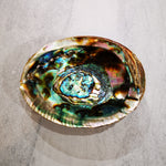 Smudging accessory - Abalone shell