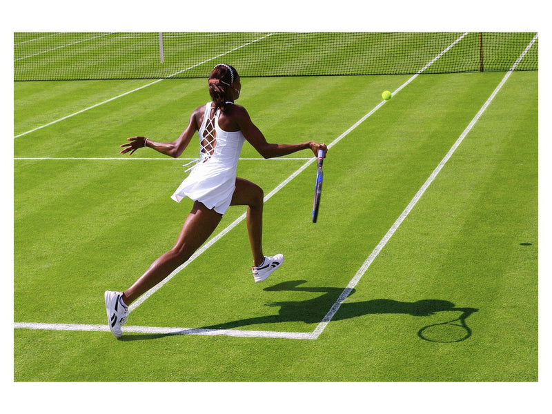 Venus Williams, 2003