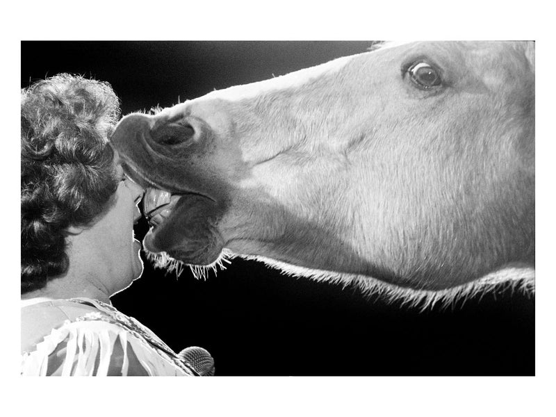A woman being kissed by a circus horse, 1981