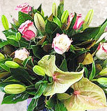 Anthurium Box Arrangement
