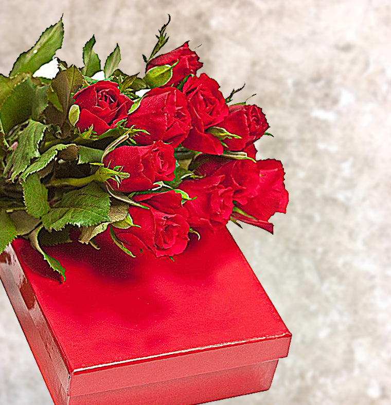 long stemmed roses boxed and chocolate gift