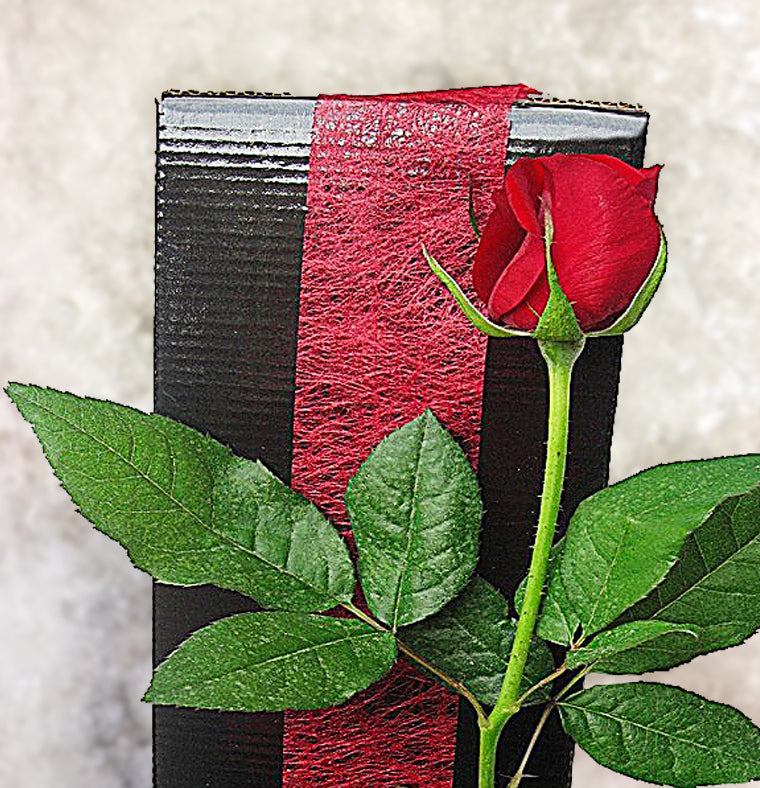 Boxed Single Red Rose