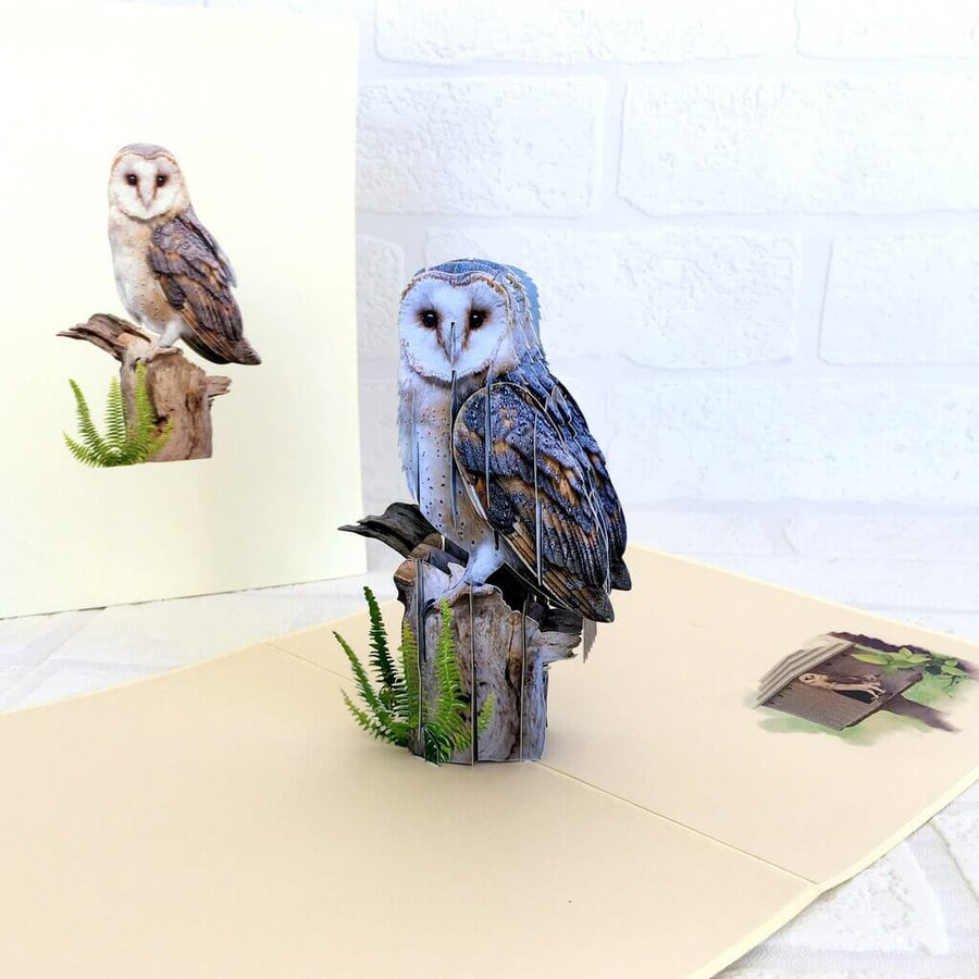 Handmade Online Party Supplies Barn Owl Bird 3D Pop Up Greeting Card
