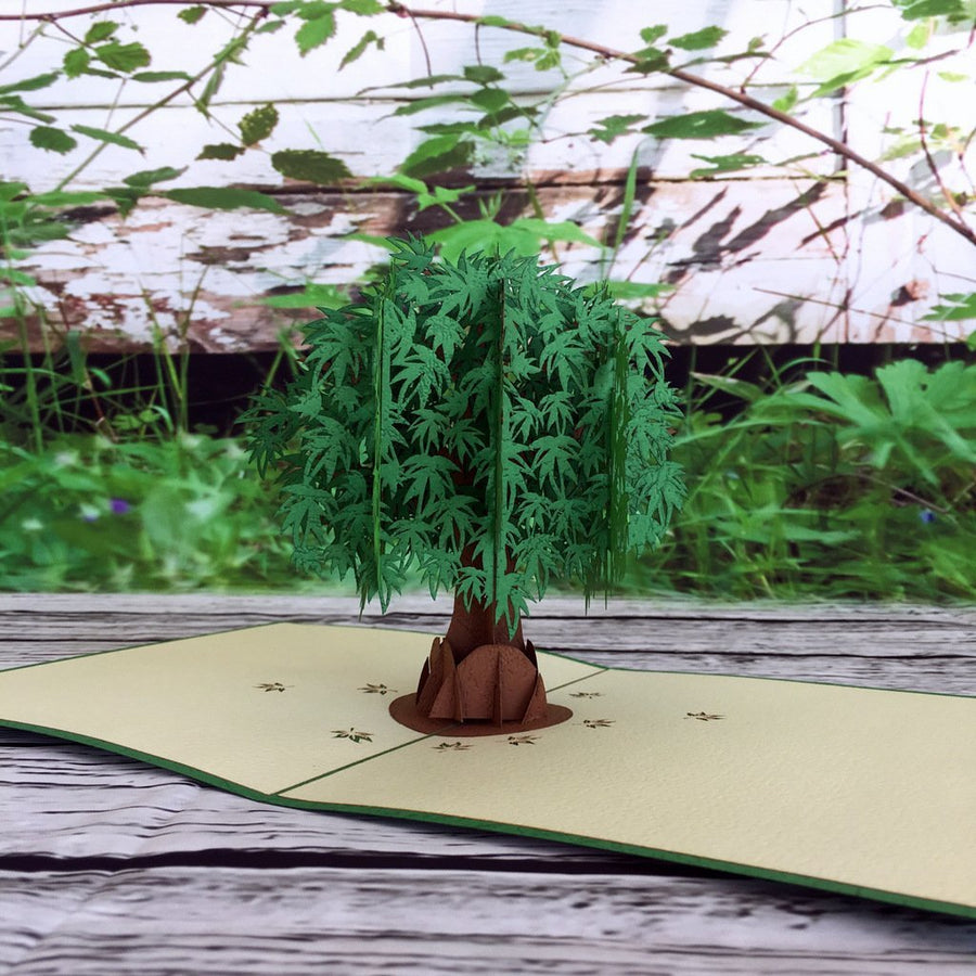 Green Japanese Maple Tree 3D Pop Up Greeting Card