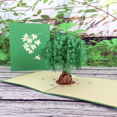 Green Japanese Maple Tree 3D Pop Up Greeting Card - Online Party Supplies