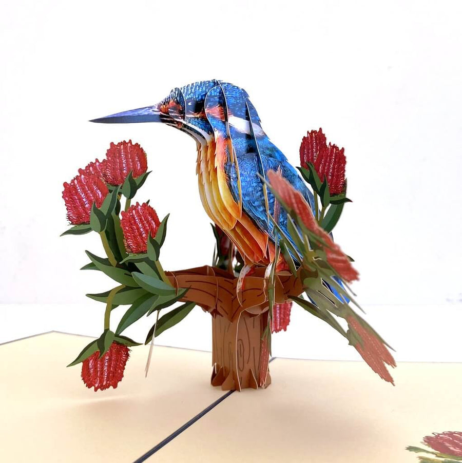 Handmade Australian Kingfisher Bird 3D Pop Up Greeting Card - Australian Native Bird Pop Up Cards - Cards for Bird Lovers