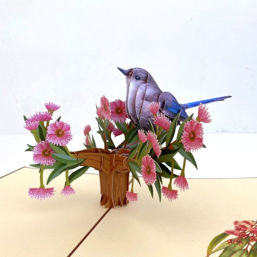 Handmade Australian Native Brown Jenny Wren (Superb Fairy Wren) 3D Pop Up Greeting Card