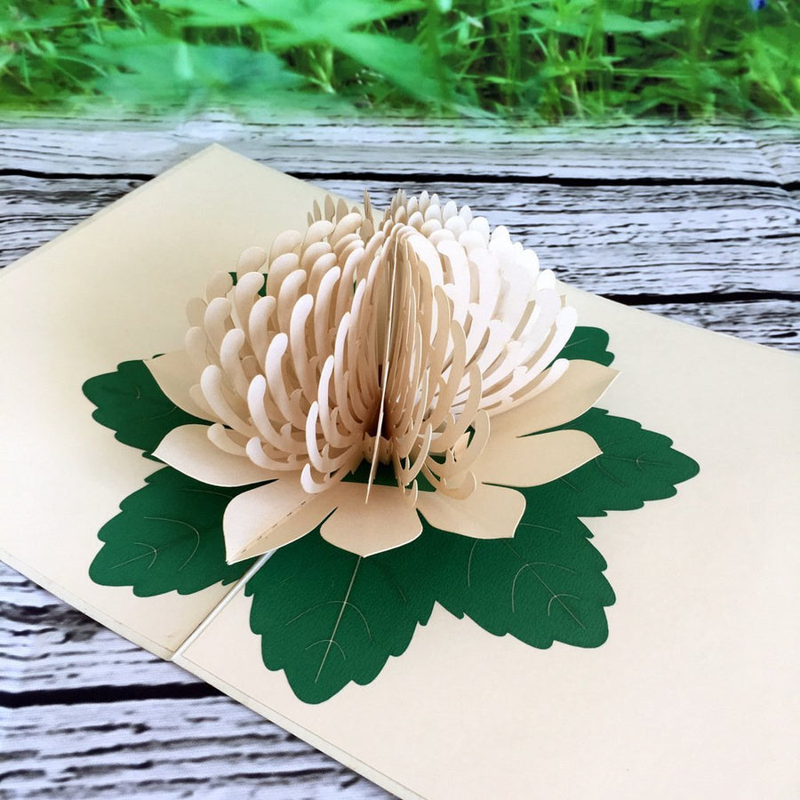 Handmade Australian Native Flower White Waratah Pop Up Greeting Card