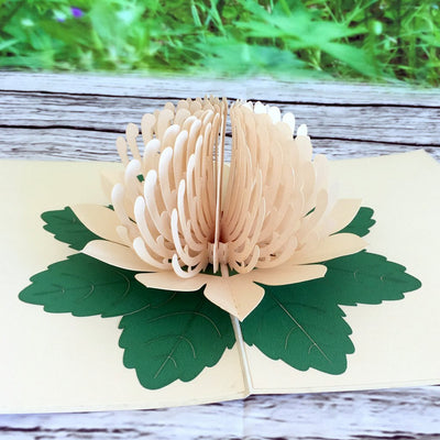 Handmade Australian Native Flower White Waratah Pop Up Greeting Card - Online Party Supplies