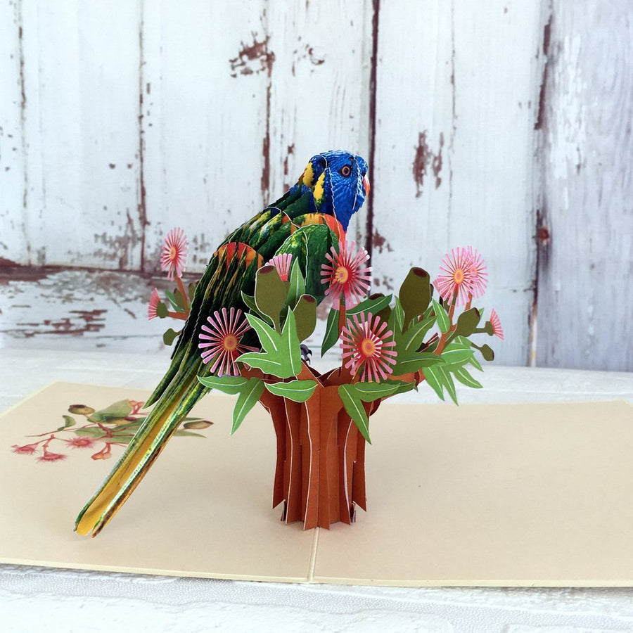 Handmade Australian Native Rainbow Lorikeet Parrot Bird 3D Pop Up Greeting Card - Online Party Supplies