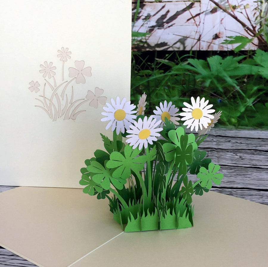 Handmade White Daisy Clover 3D Pop Up Card - Online Party Supplies