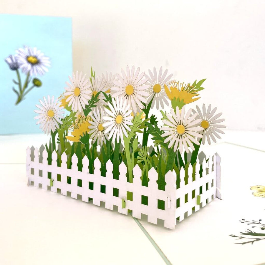 Handmade White English Daisy Garden 3D Pop Up Greeting Card - Mother's Day, Valentine's Day Pop Up Cards - Wedding Invitations