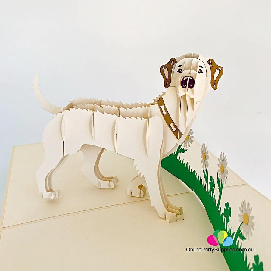 Handmade White Labrador Dog in Daisy Garden 3D Pop Up Card - Online Party Supplies