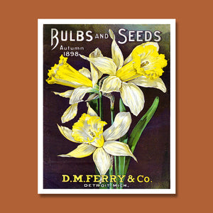 D.M. Ferry Bulb & Seed Catalogue Print, Botanical Catalogue, Botanical Art Print, Catalogue Cover Illustration, F1005
