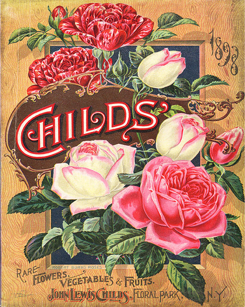 Copy of John Lewis Childs Seed Catalogue Print, Botanical Catalogue, Botanical Art Print, Catalogue Cover Illustration, F1009
