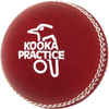 Kookaburra Practice Cricket Ball