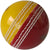 Aero Trainer (red/yellow)  Cricket Balls