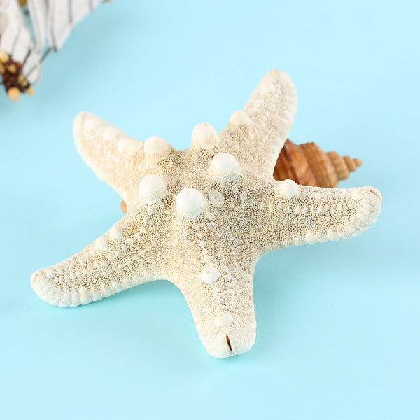 Starfish Sea Star Hairpins - Thallo Shop