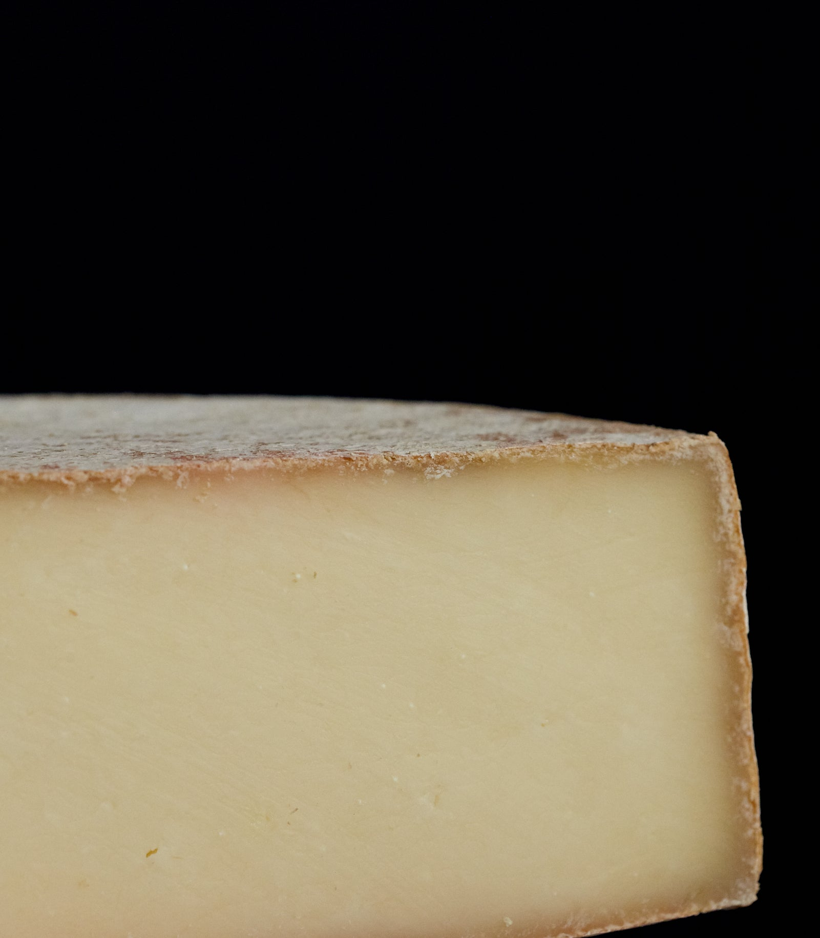 Close up of a cut piece of Spenwood vegetarian sheep's milk cheese, showing the thin, natural rind and firm, sweet, milky paste