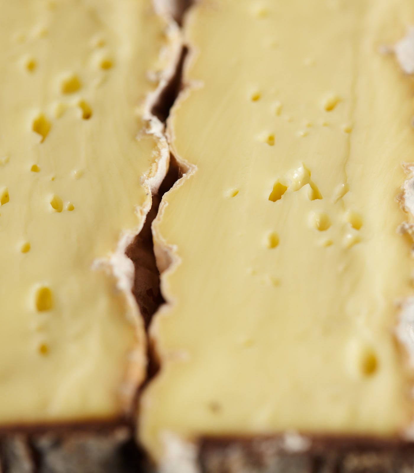Close up of a cut, washed rind Little Rollright cow's milk cheese showing the soft creamy paste