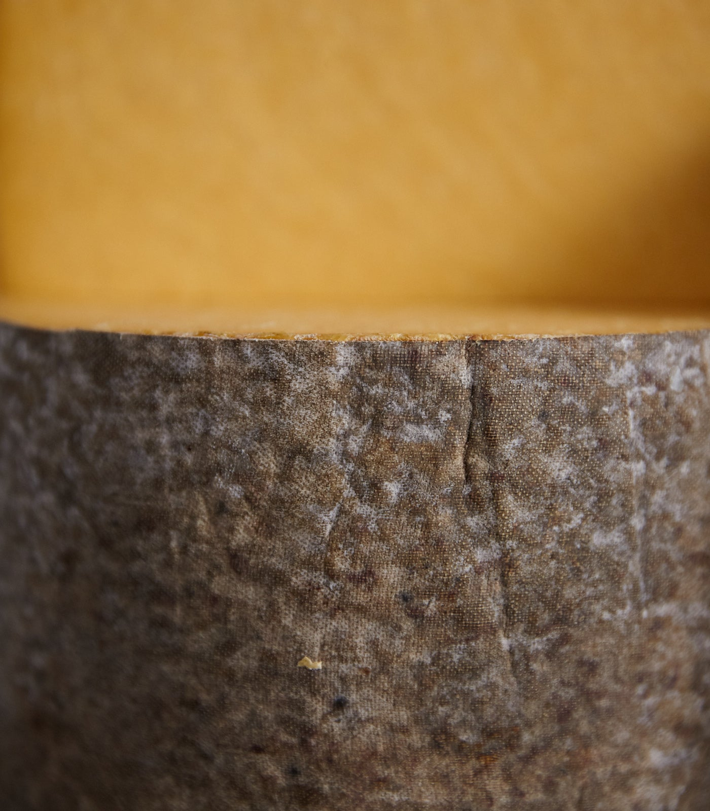 Close up of a cut wheel Appleby's Cheshire cheese showing cloth-bound casing and orange-coloured paste