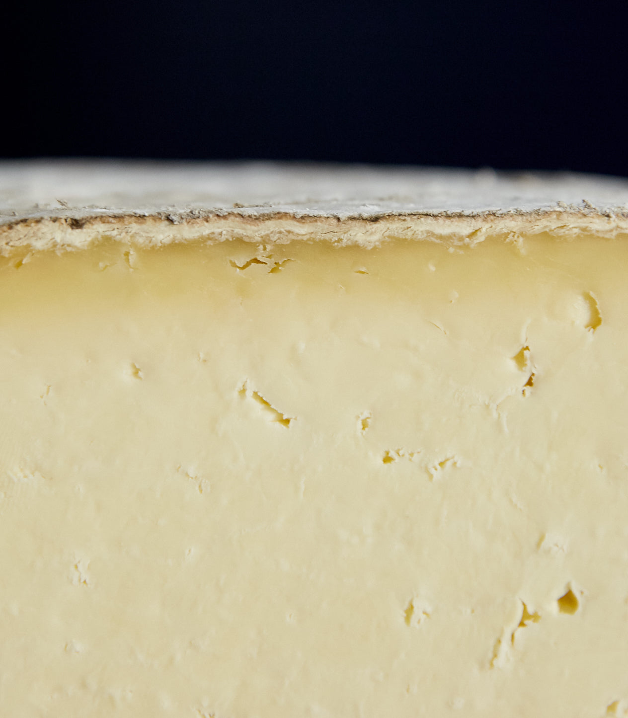Close up of a cut piece of Gorwydd Caerphilly cheese showing well developed rind and creamy paste