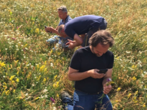 Cheesemakers fall to their knees in a meadow in France. They are amazed at the biodiversity in the grasslands and the potential this has to influence the flavour of their cheese.
