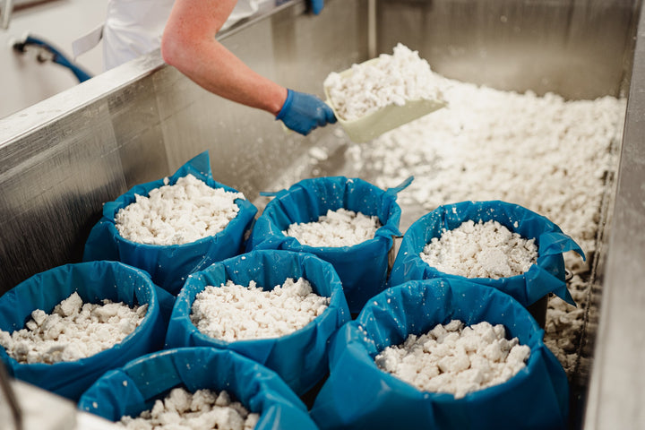 our-work: Once the whey has drained off the curd, the moulds are filled with curds.