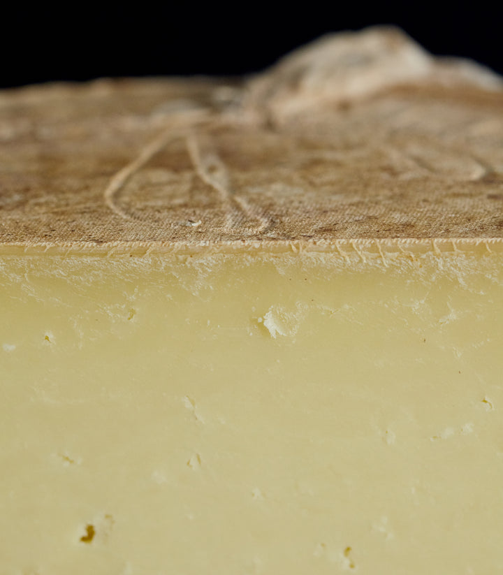 Close up of a cut piece of clothbound Corra Linn sheep's milk cheese with creamy, succulent paste