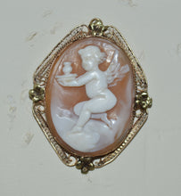 Gold Shell Cameo