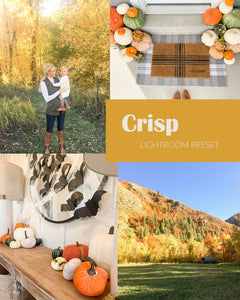 Fall Preset Bundle