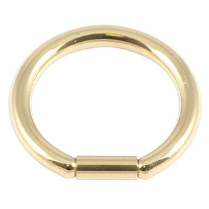 Zircon Steel Bar Closure Ring (Gold colour PVD)
