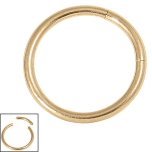 Zircon Steel Smooth Segment Rings (Gold colour PVD)
