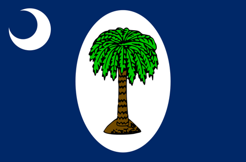 South Carolina January 1861 Flag