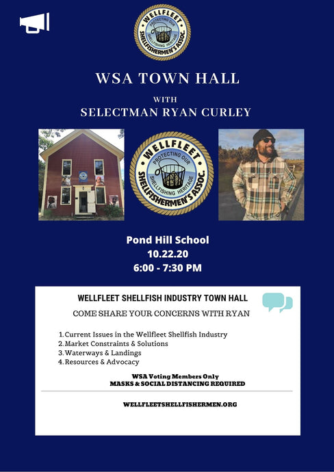 WSA Town Hall with Selectman Ryan Curley on 10.22.20
