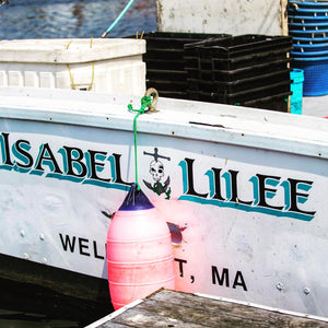 Fresh Day Boat Scallops F/V Isabel & Lilee