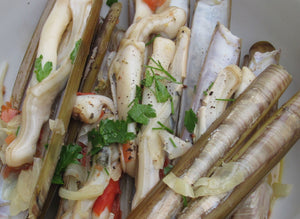 Razor Clams from Holbrook Oyster