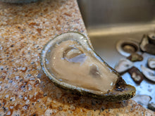 Load image into Gallery viewer, Wellfleet Oysters from Shellfishermen's Farmers Market