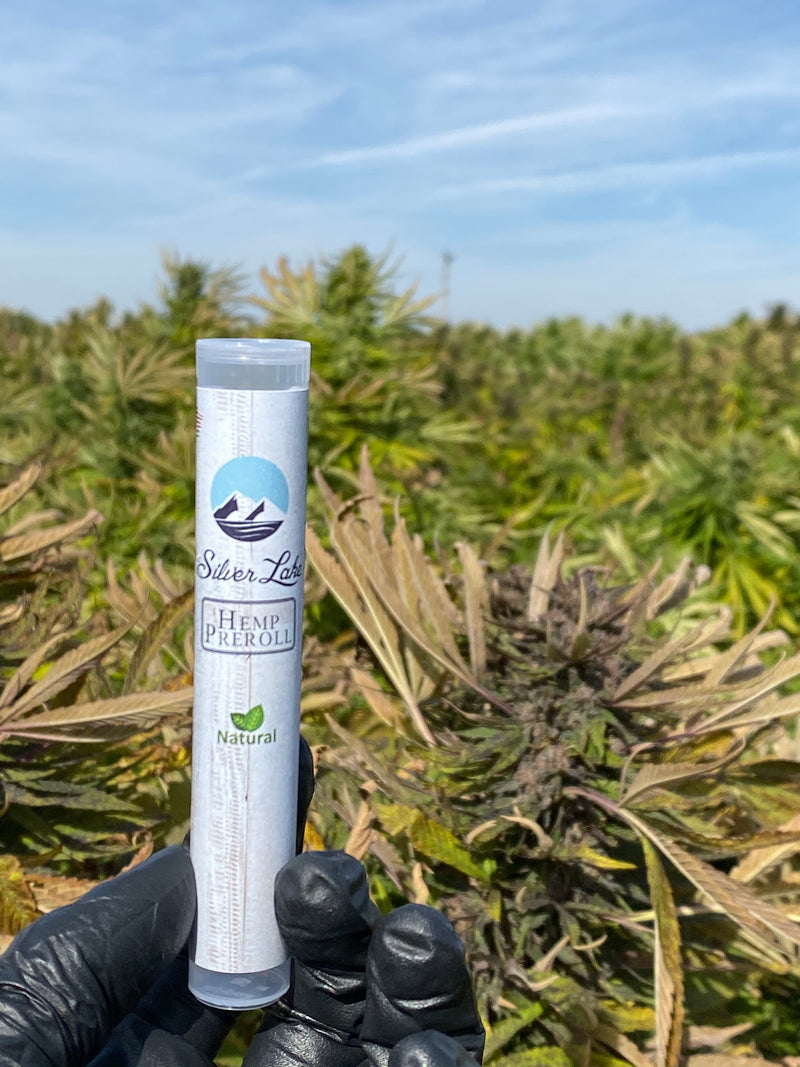 Naturally Flavored Hemp Pre-Rolls | Silver Lake