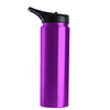 Hogg Violet Translucent 25 oz HydroSport Bottle