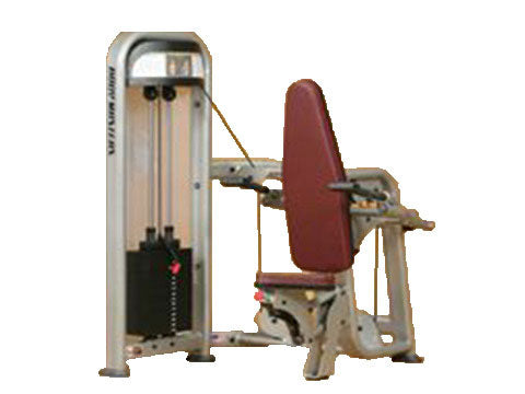 Factory photo of a Used Body Masters Premier Series Tricep Press