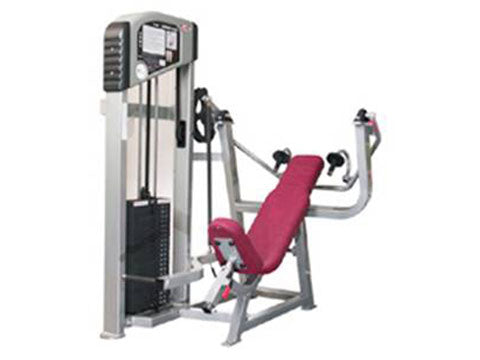 Factory photo of a Refurbished Flex Platinum Series Overhead Tricep