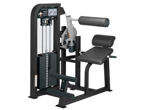 Factory photo of a Refurbished Life Fitness Pro 2 Back Extension