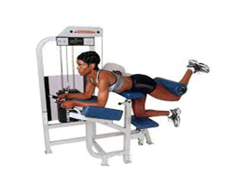 Factory photo of a Refurbished Life Fitness Pro Glute